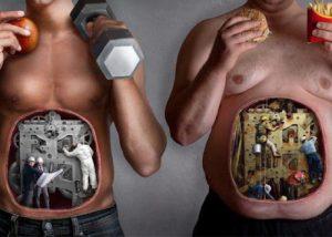 nutrició evolutiva aplicada a l'esport centre de salut i rendiment Ariadna